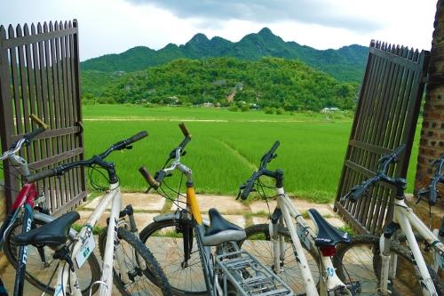Auf zwei Rädern durch den Urlaub