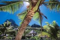Paradiesisches Inselhopping in der Südsee