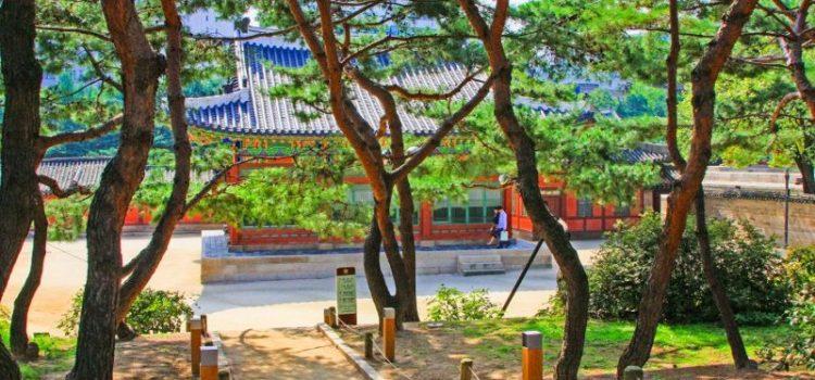 Das Reise-Trend-Ziel Südkorea mit Gebeco erleben